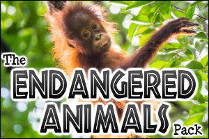 The Endangered Animals Pack