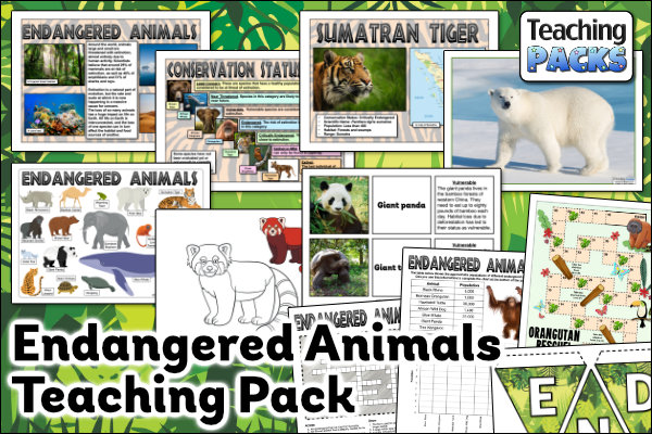 The Endangered Animals Teaching Pack