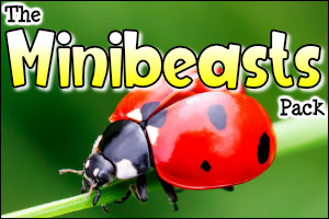 The Minibeasts Pack